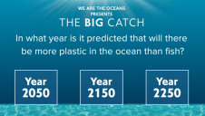 Players of The Big Catch game are asked educational questions, teaching them key facts about our oceans and plastic pollution